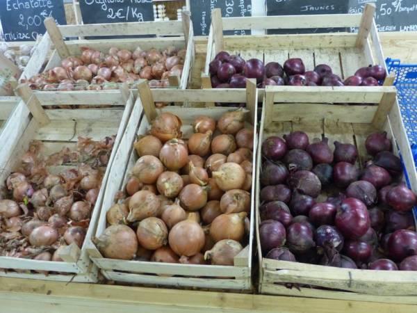 Légumes proposés au magasin de la ferme de Keroudy
